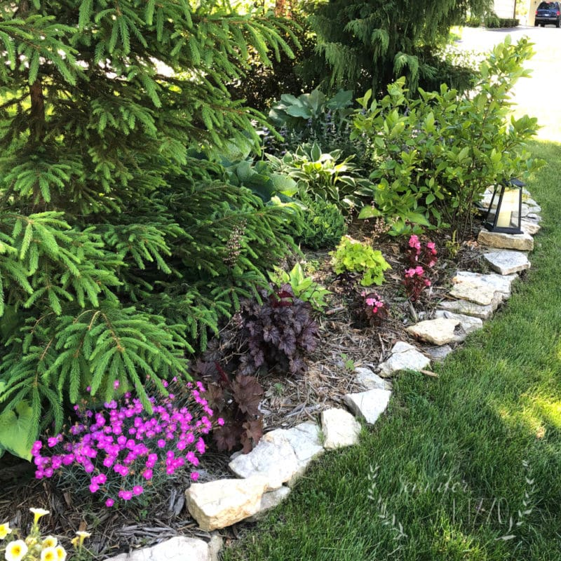 Front berm landscaping with grocery store annuals
