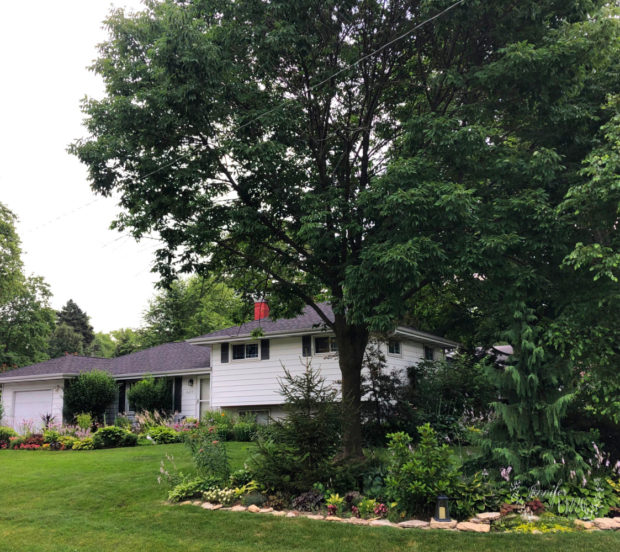 Split level house with landscaping