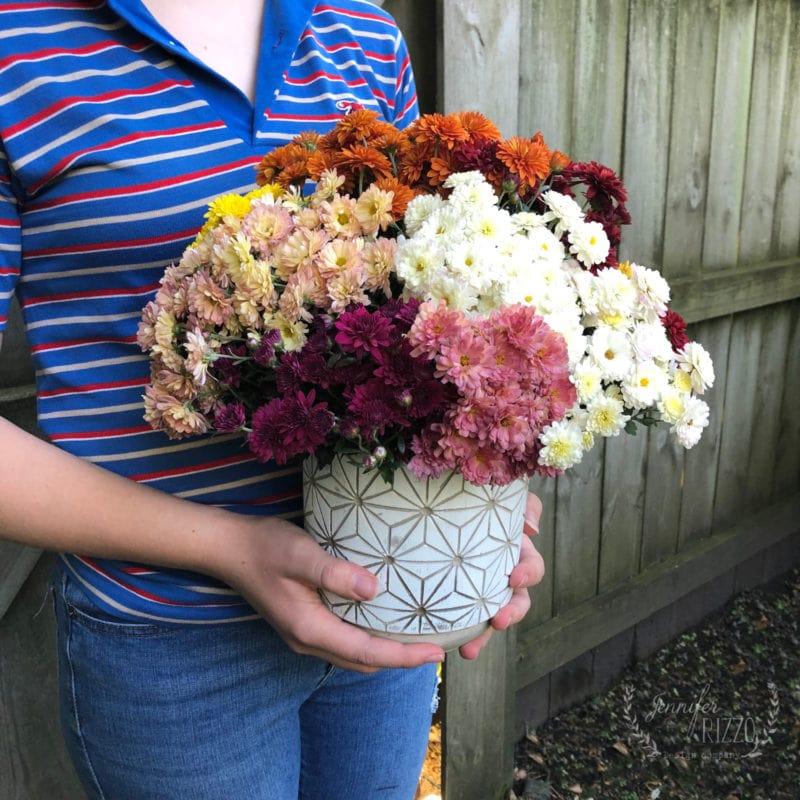 Create a rainbow mum bouquet