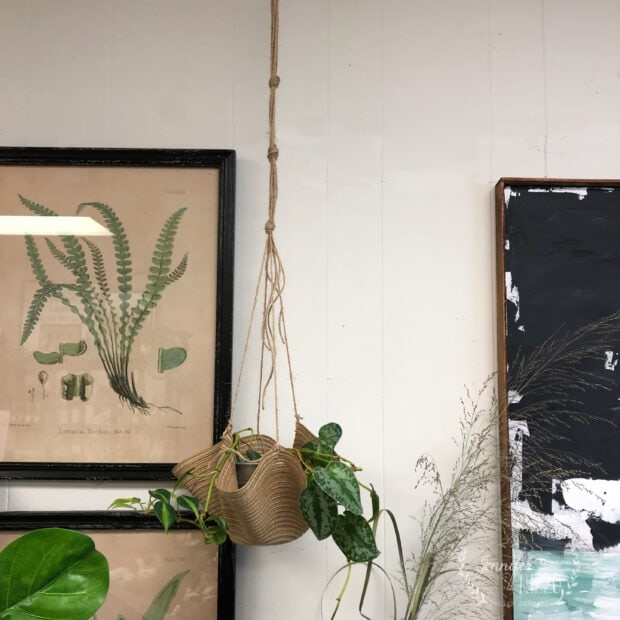 DIY hanging plant hanger