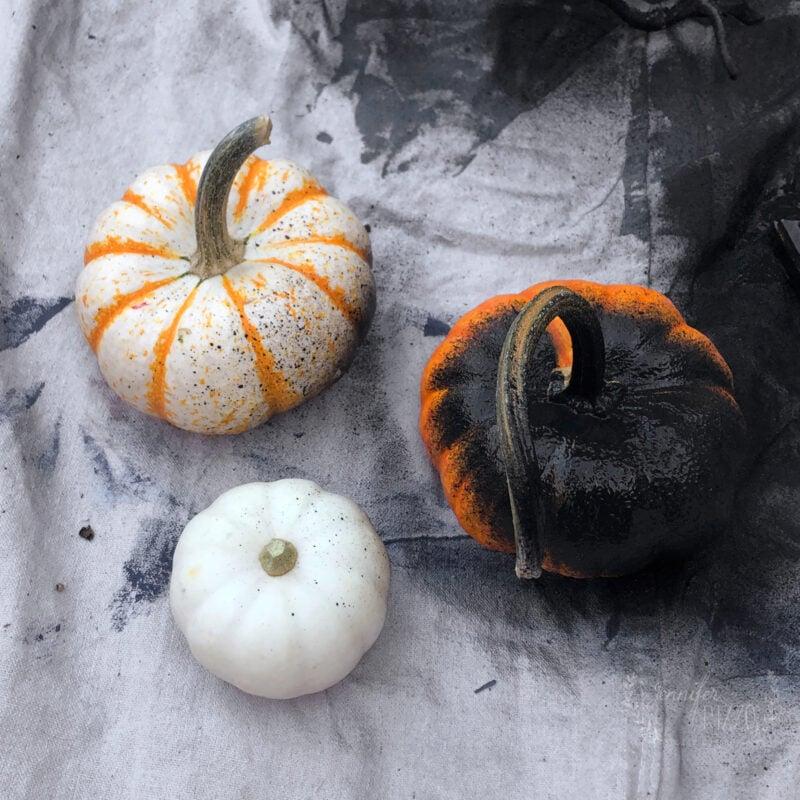 Spray paint pumpkins black