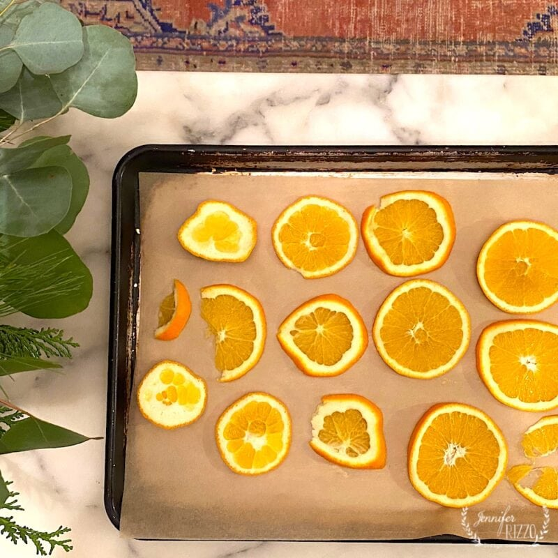 Orange slices on parchment ready for oven drying
