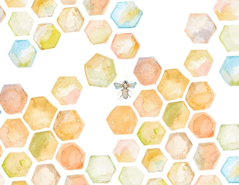 Free bee and honeycomb art printable from Jennifer Rizzo for personal use only for craft projects or as an instant art printable
