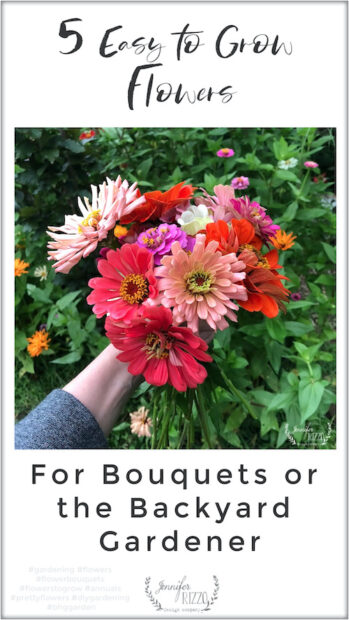 5 Easy to Grow Flowers for Bouquets or the Backyard Gardener