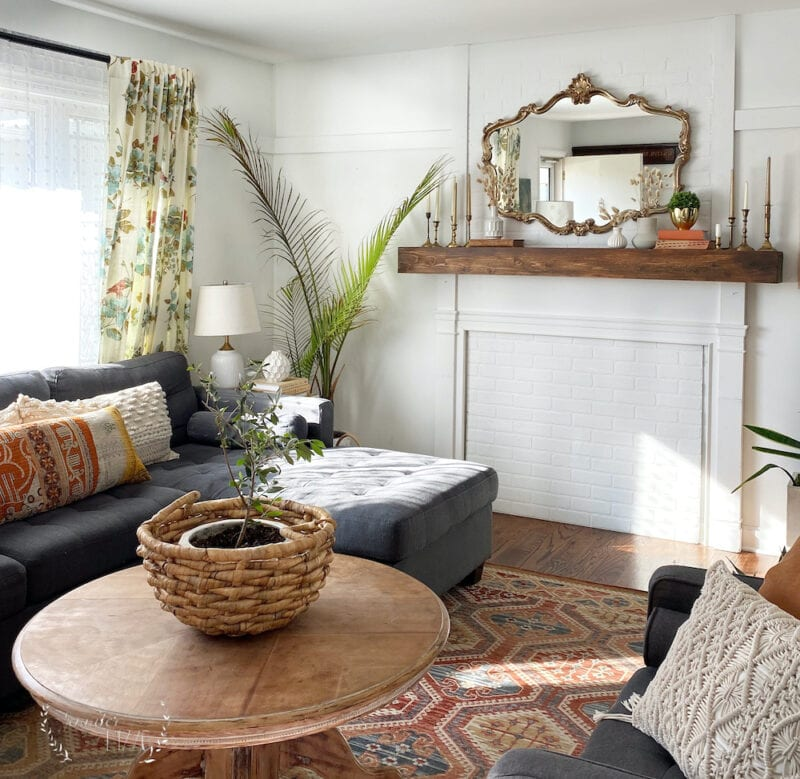Boho modern living room with plants
