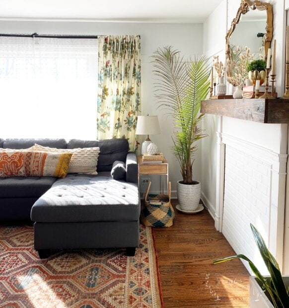 Love this living room with plants and colorful rug
