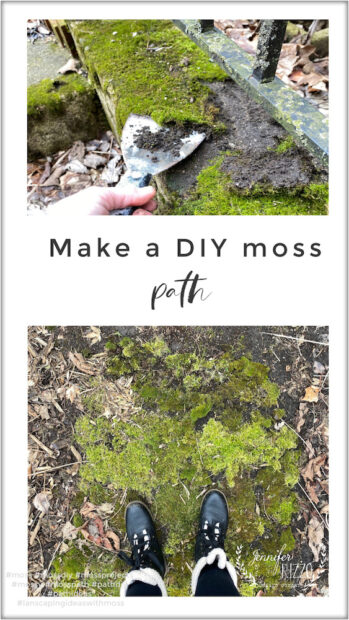 Make a DIY moss path as a landscaping idea