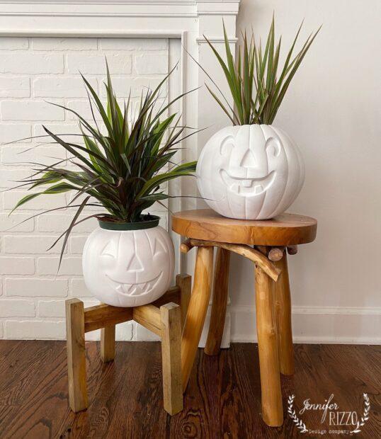 Make pumpkin planters from plastic jackolanterns