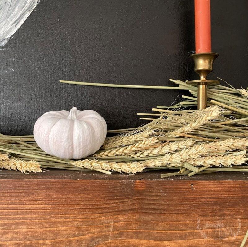 mini pumpkin with wheat