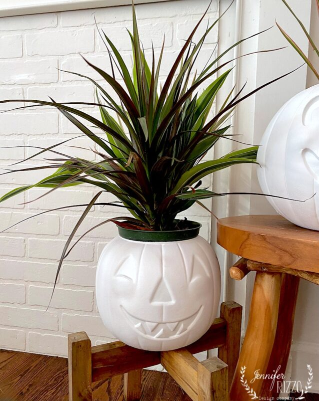 Fun painted pumpkin planter from a jackolantern