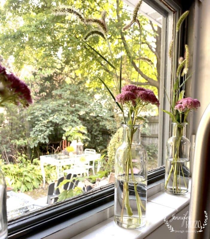 KItchen window with sedum