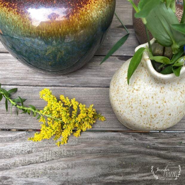 Goldenrod wildflower