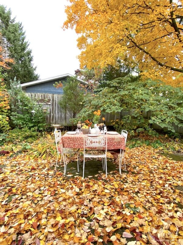 Outdoor tablescape in fall