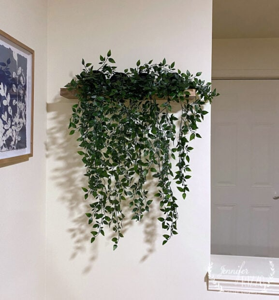 Floating plant wall DIY