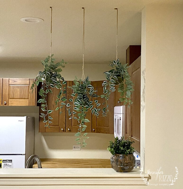 Hanging moss kokedama balls in opening between rooms