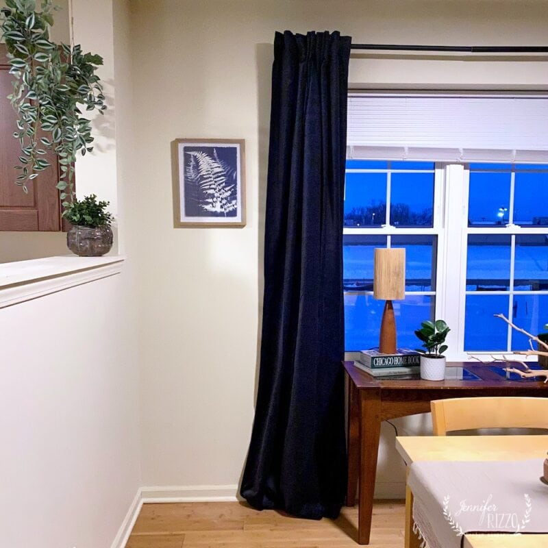 Fern art and hanging plants