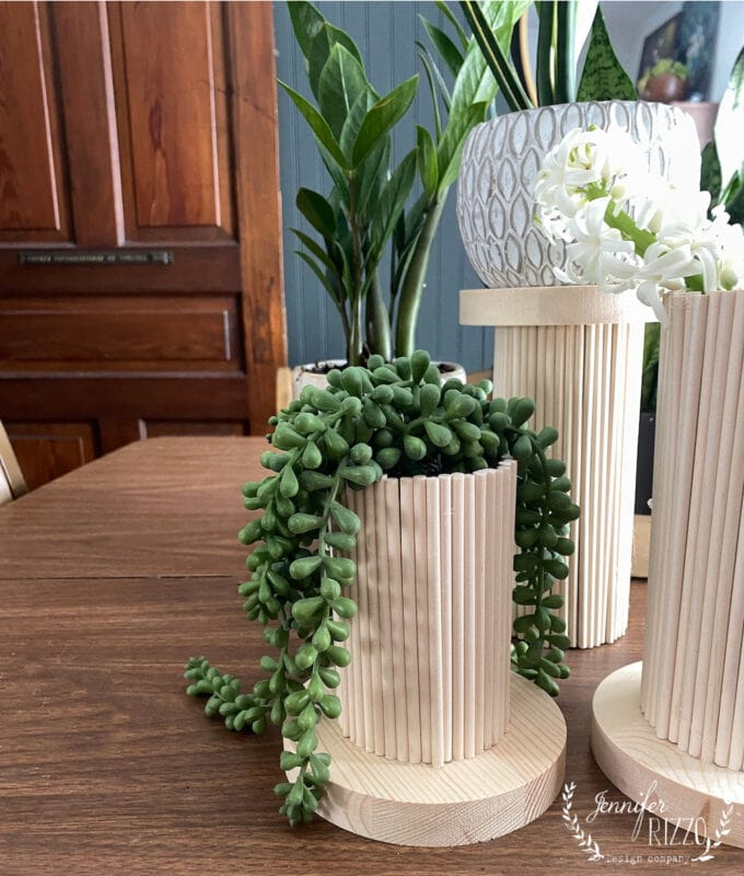 Wood Dowel Rod vase with string of pearl plants