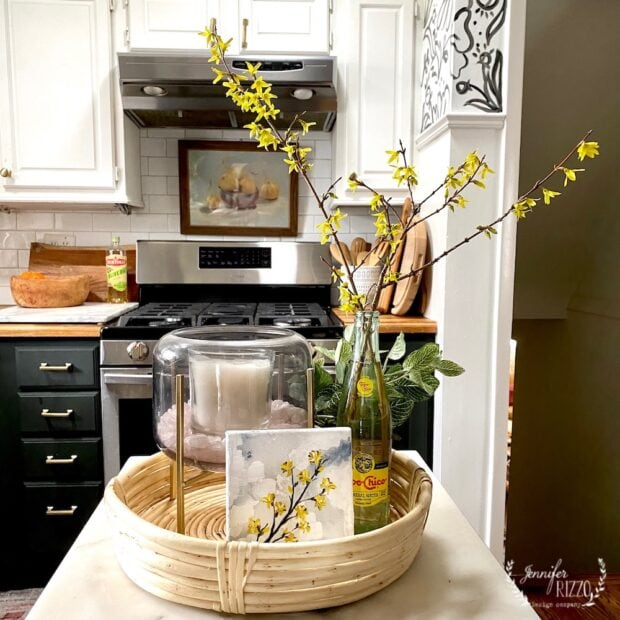 Forcing Forsythia Branches to bloom indoors