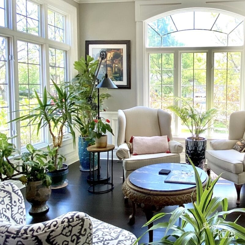 Bright traditional living room with plants and wign back chairs