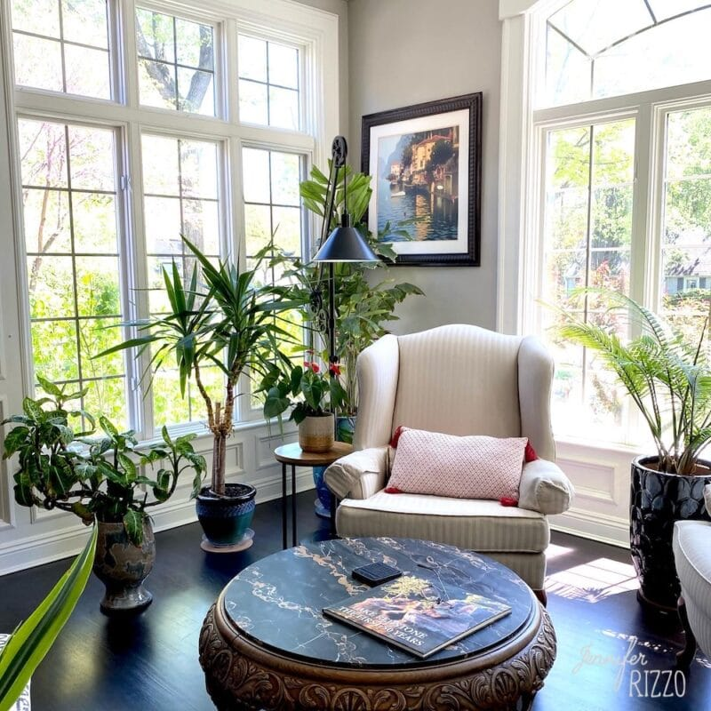 Living room makeover with plants on a budget