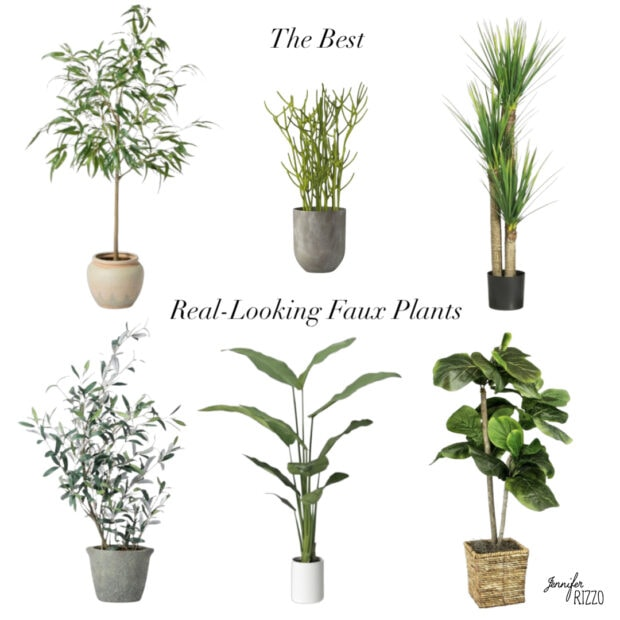 The Best Real Looking Faux Plants to Decorate With