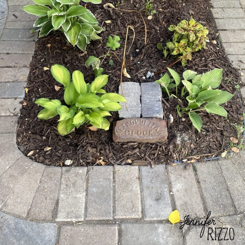 Planting bed joining new and old stone patio