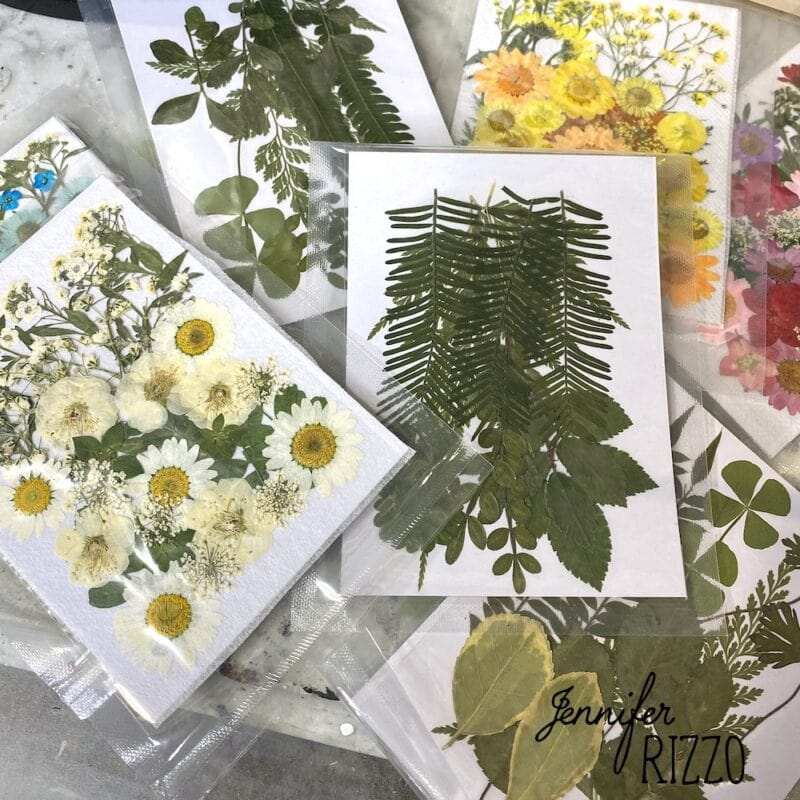 Dried flower packets for crafts
