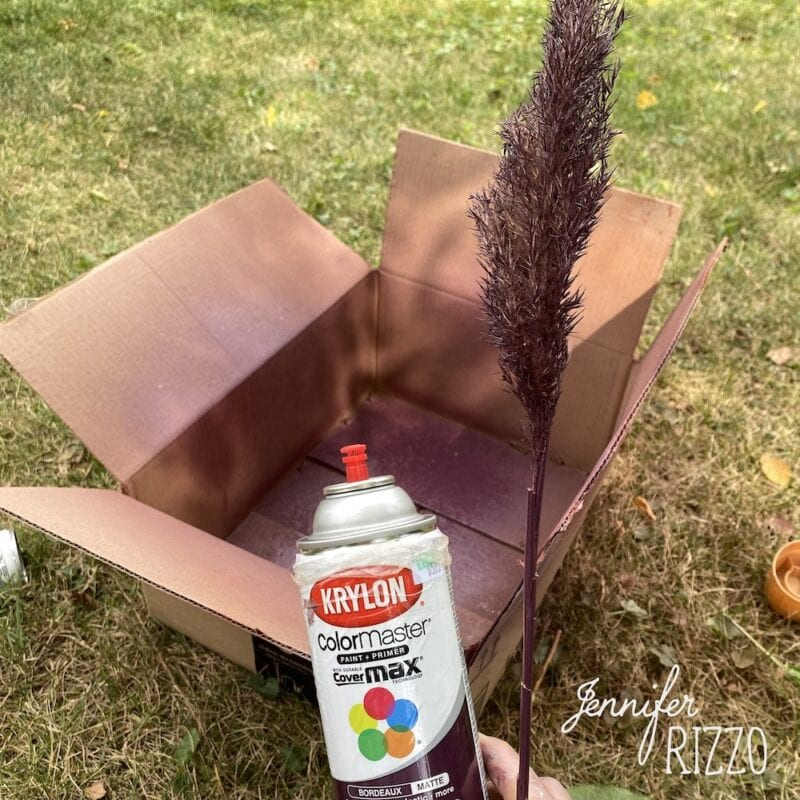 Painting pampas grass with spray paint